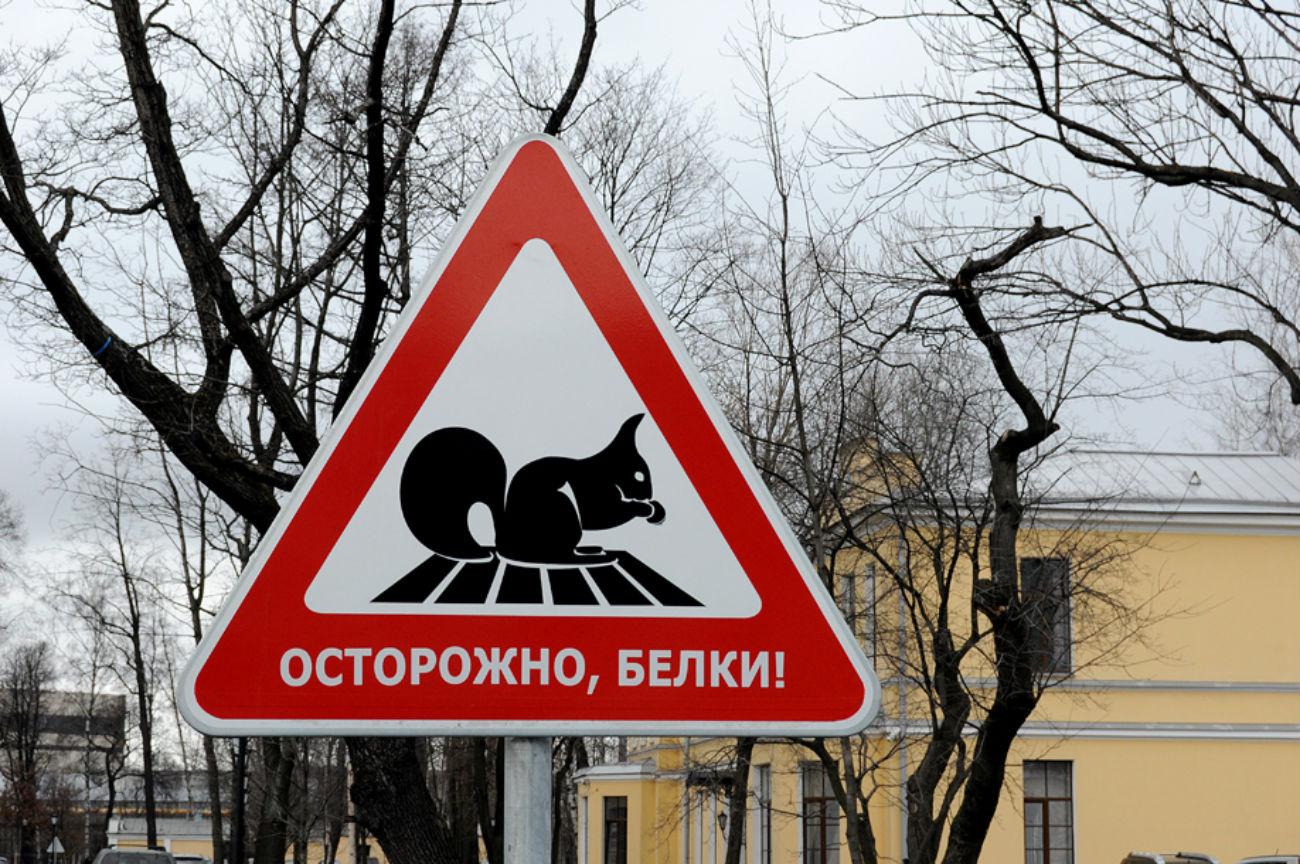 """Предупредувањето """"Внимание, верверици!"""" се наоѓа на Свердловскиот насип во Санкт Петербург. Овие мали глодари често се гледаат во околината.Danil Churilov"""