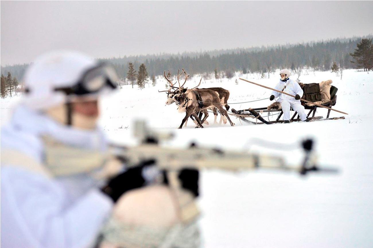 Para se deslocar, os militares utilizam o transporte dos povos nativos do Extremo Norte: trenós puxados por renas e cães.