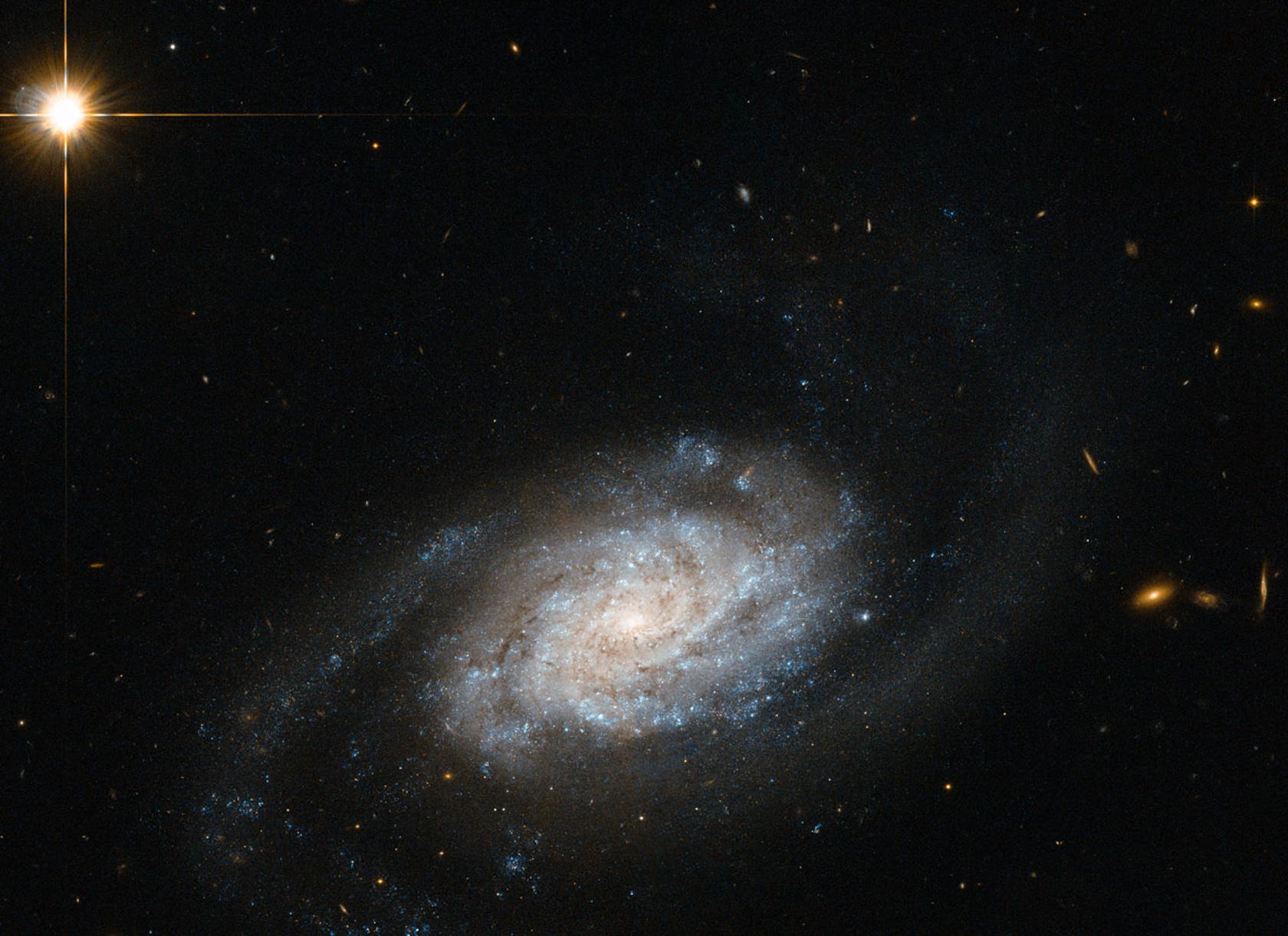 Nel 1994 all'interno della galassia NGC 3370 è stata scoperta una supernova la cui luce, al momento dell'esplosione, ha raggiunto la Terra