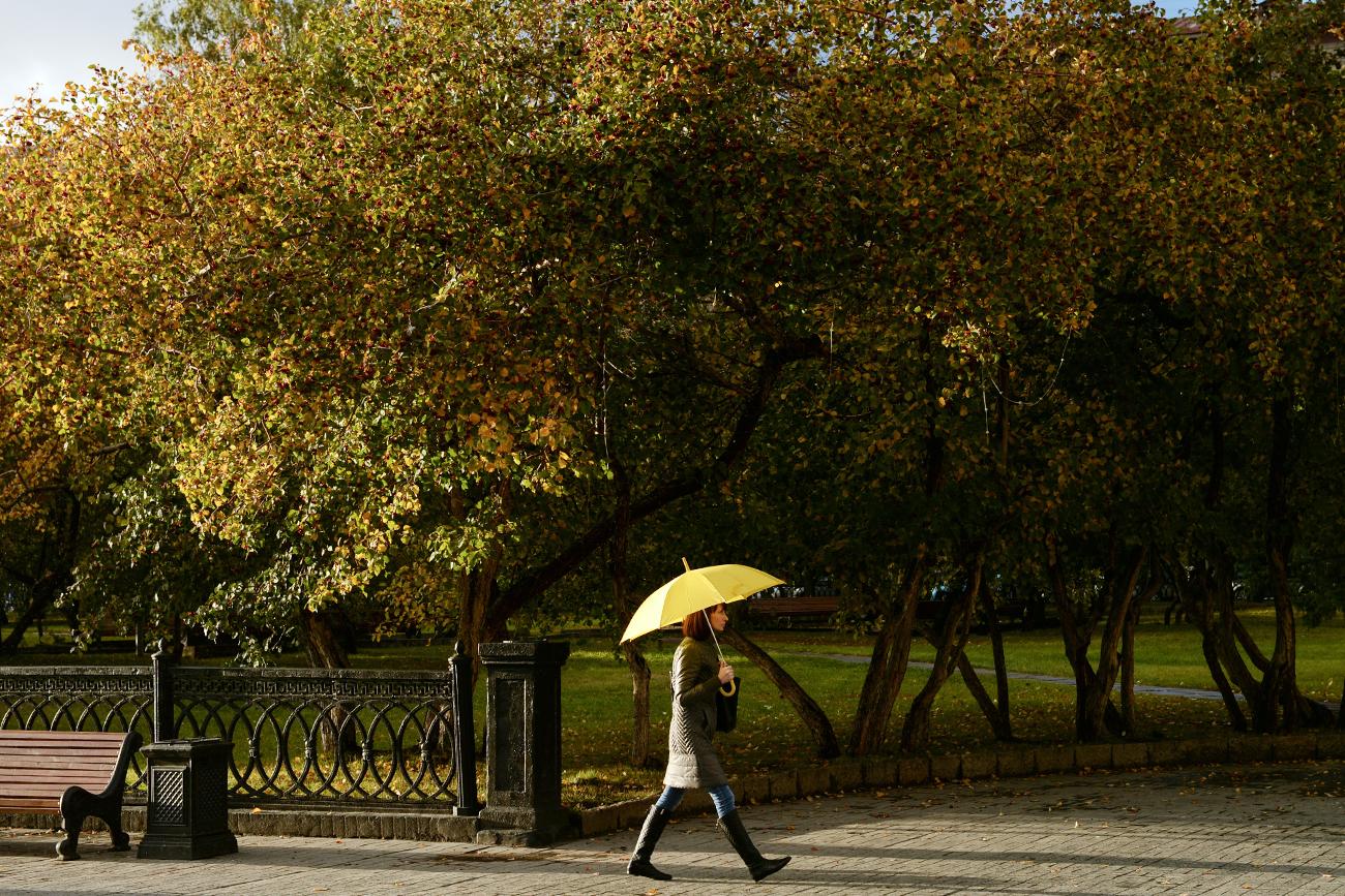 傘をさして歩く女性。ノボシビルスク市