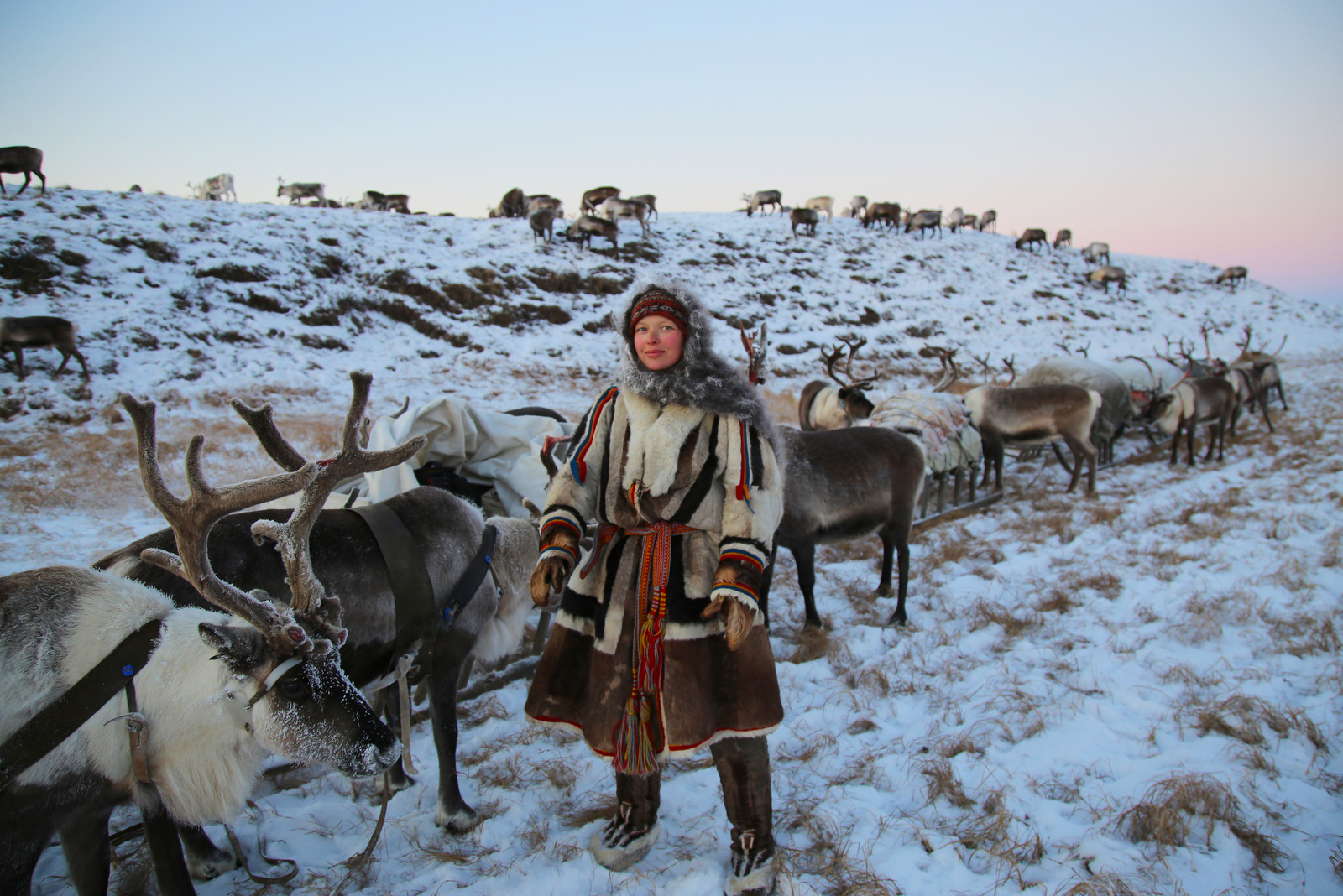 Anthropologist Alexandra Terekhina with her argish, the sledge caravan