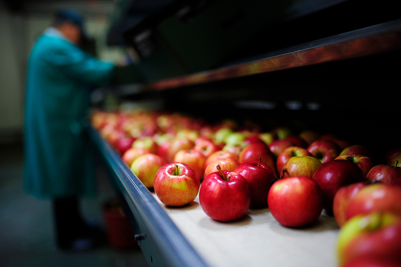 Fruit from Poland is delivered to Russian supermarkets disguised as Belarusian.