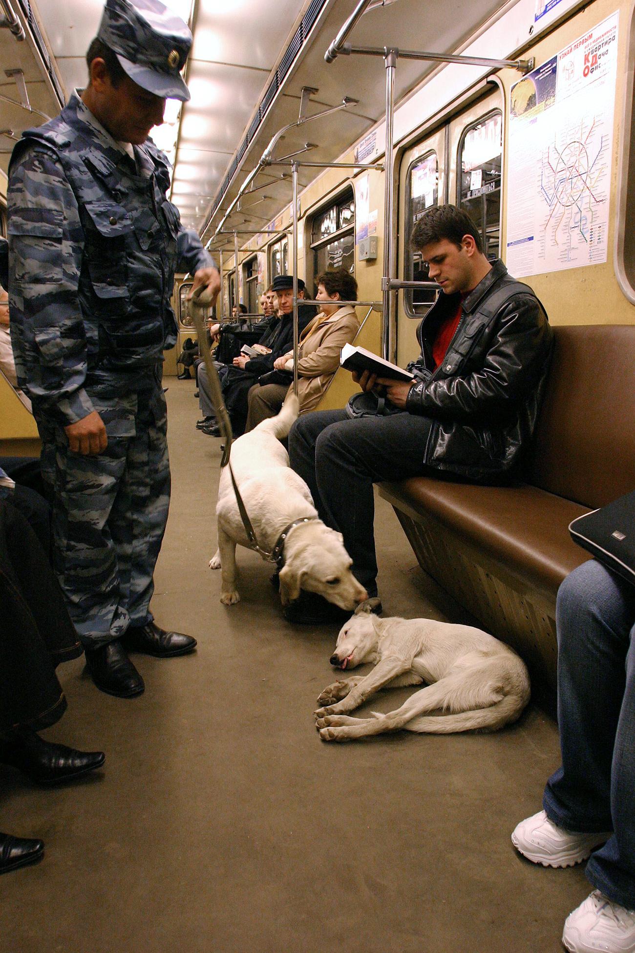 Unità cinofile nella metro di Mosca\n
