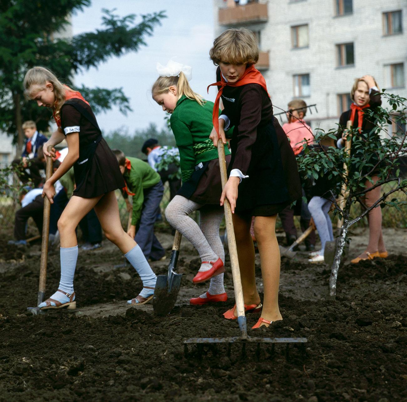 Un grupo de pioneras trabaja durante el subbótnik, un sábado dedicado a la limpieza de la ciudad, en Schástie (Felicidad), ciudad ucraniana. Fuente: Boris Kavashkin/TASS