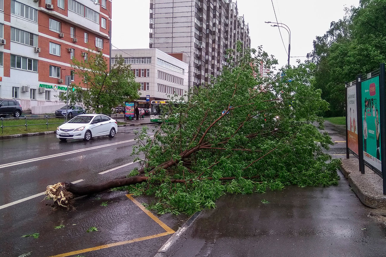 Fatalities reported in Moscow thunderstorms.