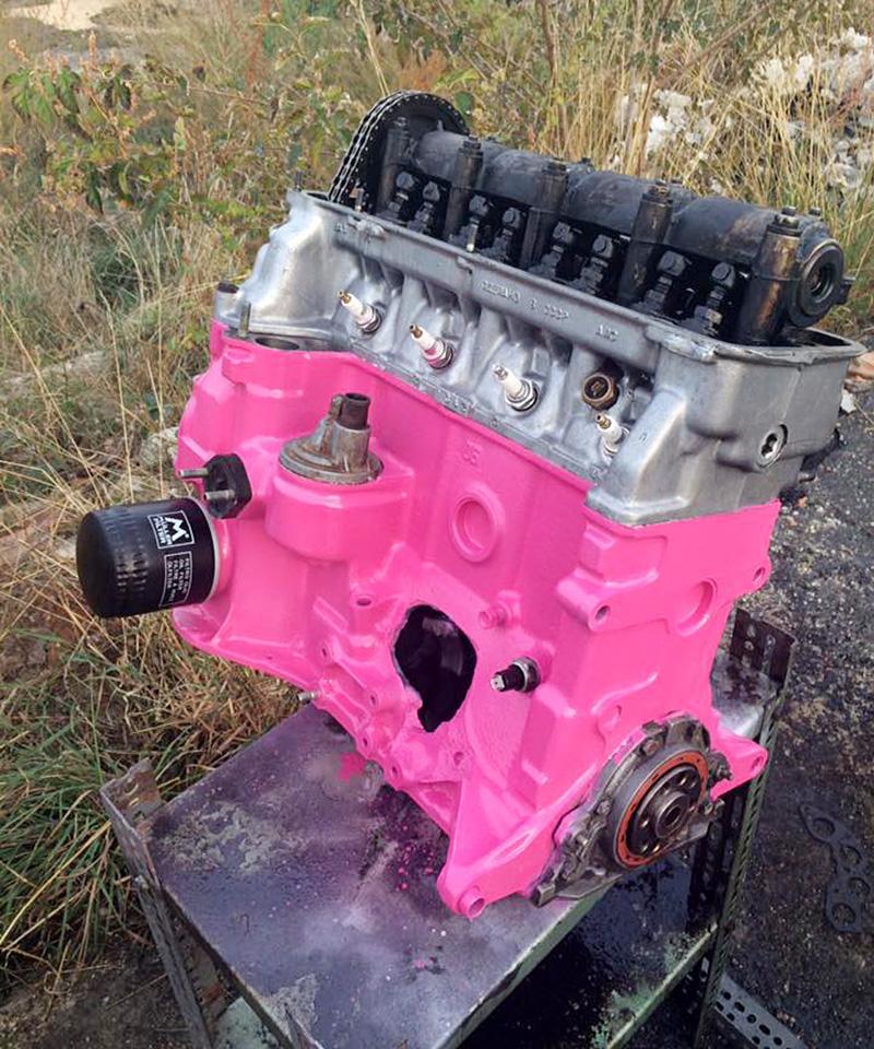 Até o motor do carro de Dora é rosa (Foto: Arquivo pessoal)