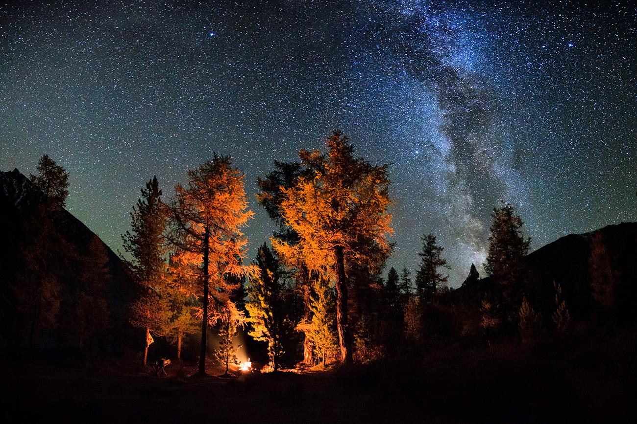 Провести ноћ у тајги веома је стресно искуство. Извор: Getty Images