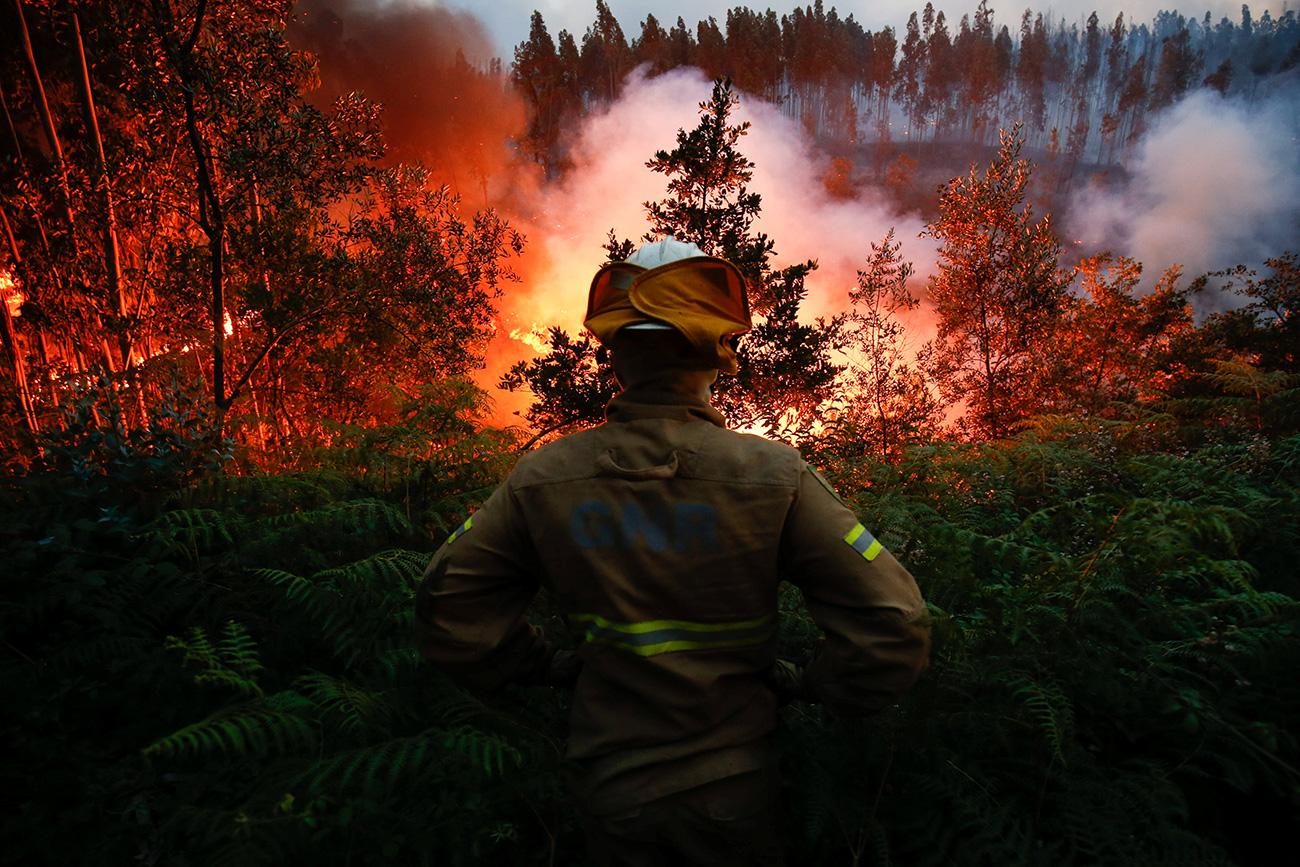 """Devido a """"trovoadas secas"""" e fortes ventos, fogo se alastrou rapidamente"""