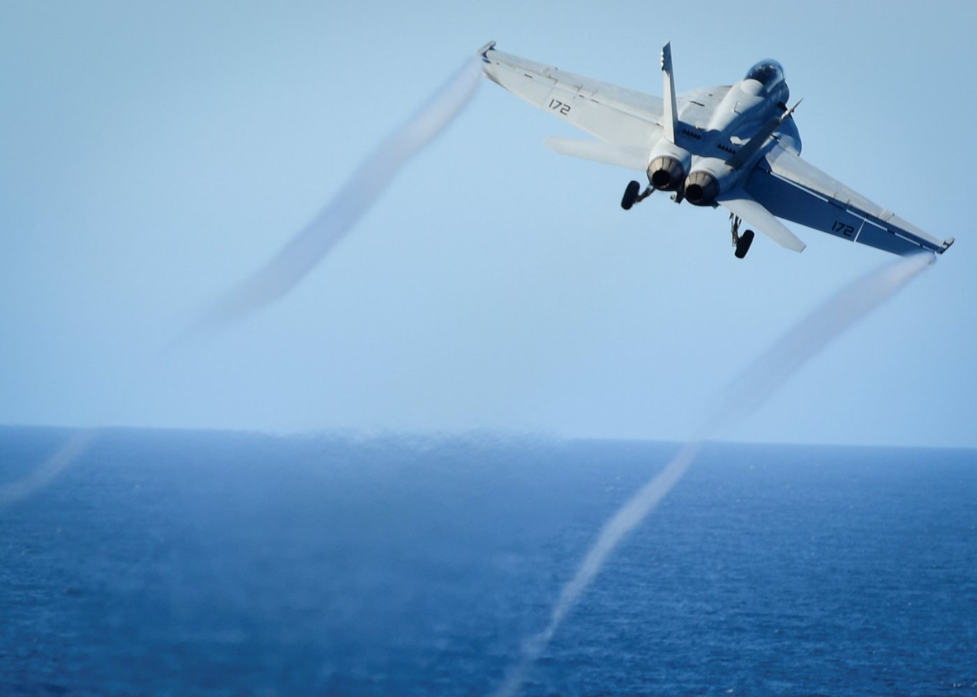 An F/A-18E Super Hornet.  On June 18, an F/A-18E plane of the U.S. Air Force shot down Syria's Sukhoi-22 fighter-bomber.