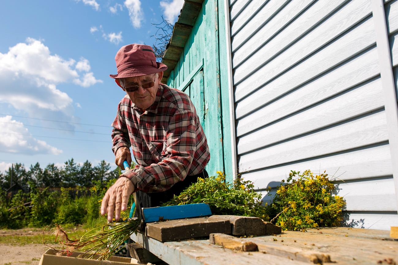 Широки потом почиње да озбиљно изучава моћ трава. Сам прави неколико народних лекова, на основу рецептуре коју су му пренели старији људи из његовог краја.