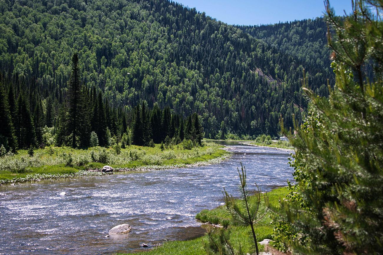 En juin, la chaleur estivale règne déjà sur les étendues de l'Altaï. Étonnamment, alors qu'elle paraissait si fraîche, l'eau de la rivière s'est avérée très chaude.