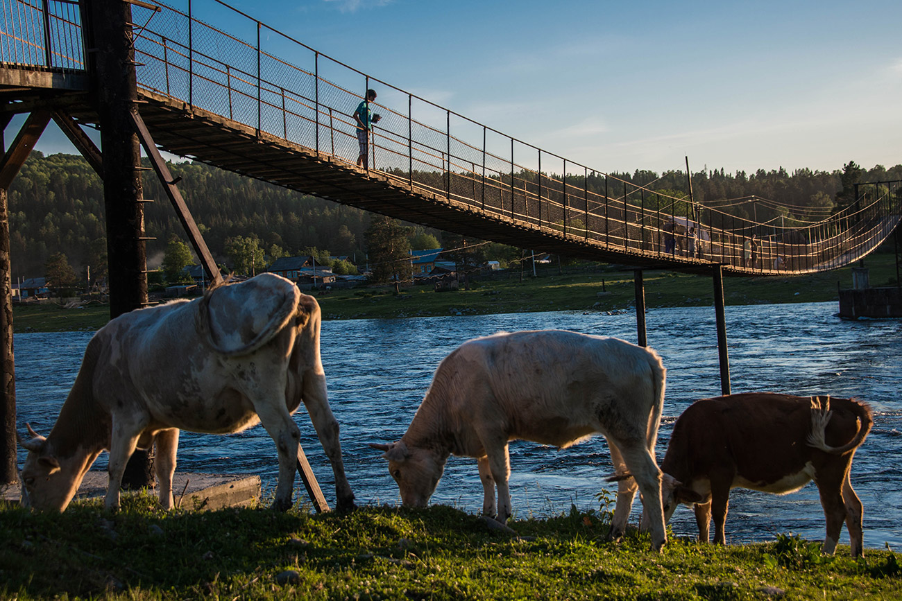 Il y a 400 ans, un peuple nomade turc d'éleveurs de bétail, les Tiolioss, occupait les berges du lac Teletskoïe, dans l'Altaï. Leurs descendants, les Altaïens, y vivent encore.Les circuits touristiques dans les montagnes de l'Altaï passent généralement par le lac Teleteskoïe. Il est longé par un petit sentier qui part du village d'Artybach et mène à la vallée de la rivière Tchoulychman, aux Champignons de pierre et à la cascade Ouchar. Haute de 160 mètres, c'est la plus grande de l'Altaï.