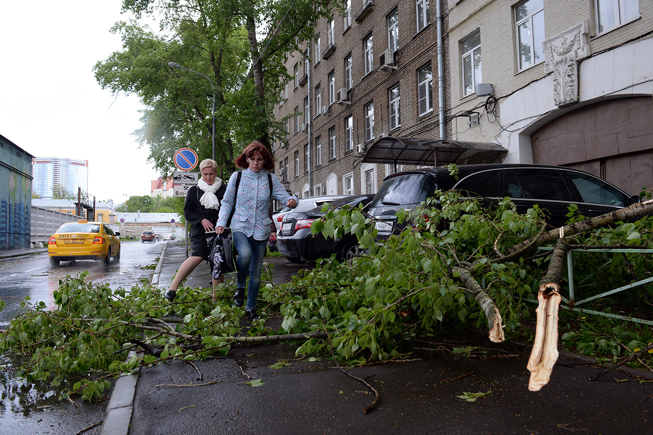 The toughest day of the season was May 29 - a wild hurricane struck the Russian capital. Source: Evgeniy Odinokov/RIA Novosti