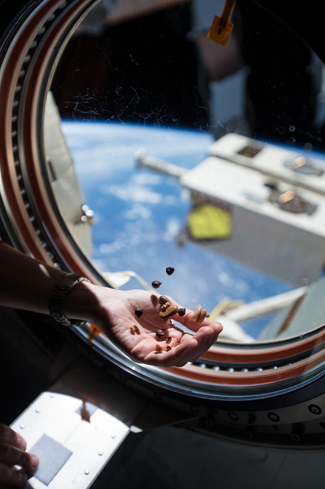 Astronauta se alimenta a bordo da ISS  (Foto: ZUMA Press/Global Look Pressione)