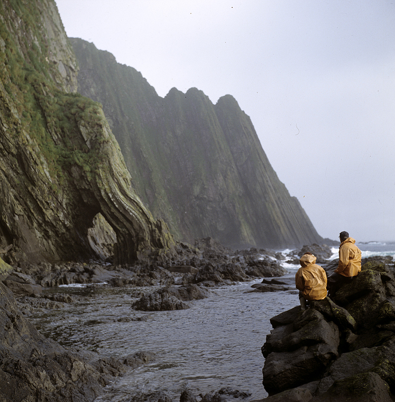 Острво Менди, Командорска острва, Берингово море. Извор: A. Kибалчич/Риа Новости