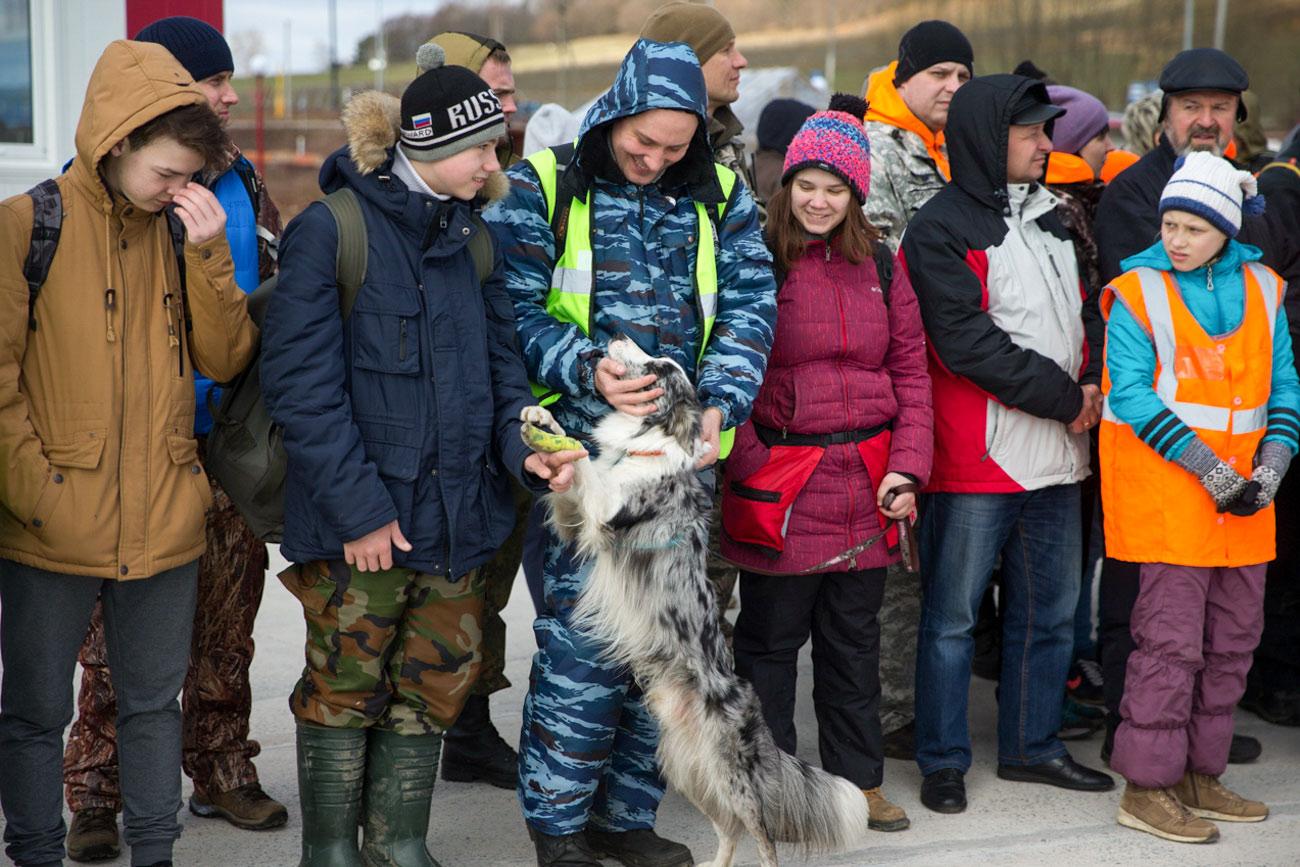 捜索救助犬=写真提供:「リザ・アラート」