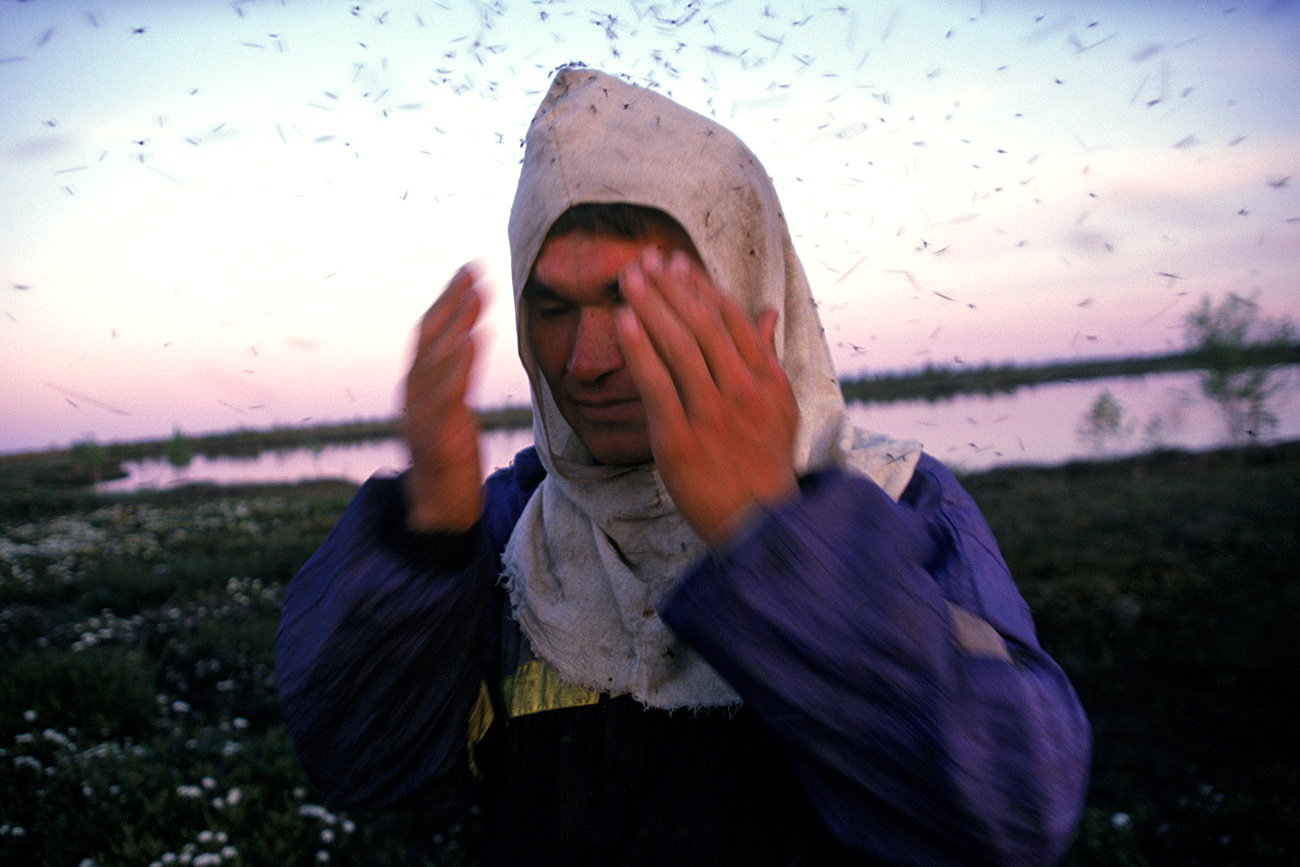 In Siberia, un uomo cerca di allontanare le aggressive zanzare dal volto. Fonte: Getty Images