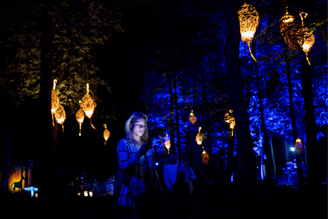 Russian and European artists decided to play with birds, trees, water and light during the Inspiration Art Festival.