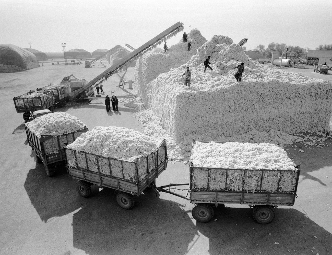 To make up for the shortfall, cottonpickers started putting stones in their sacks, and empty rail carriages were dispatched to Moscow where dishonest officials would take bribes to record them as being full. // Kazakh SSR