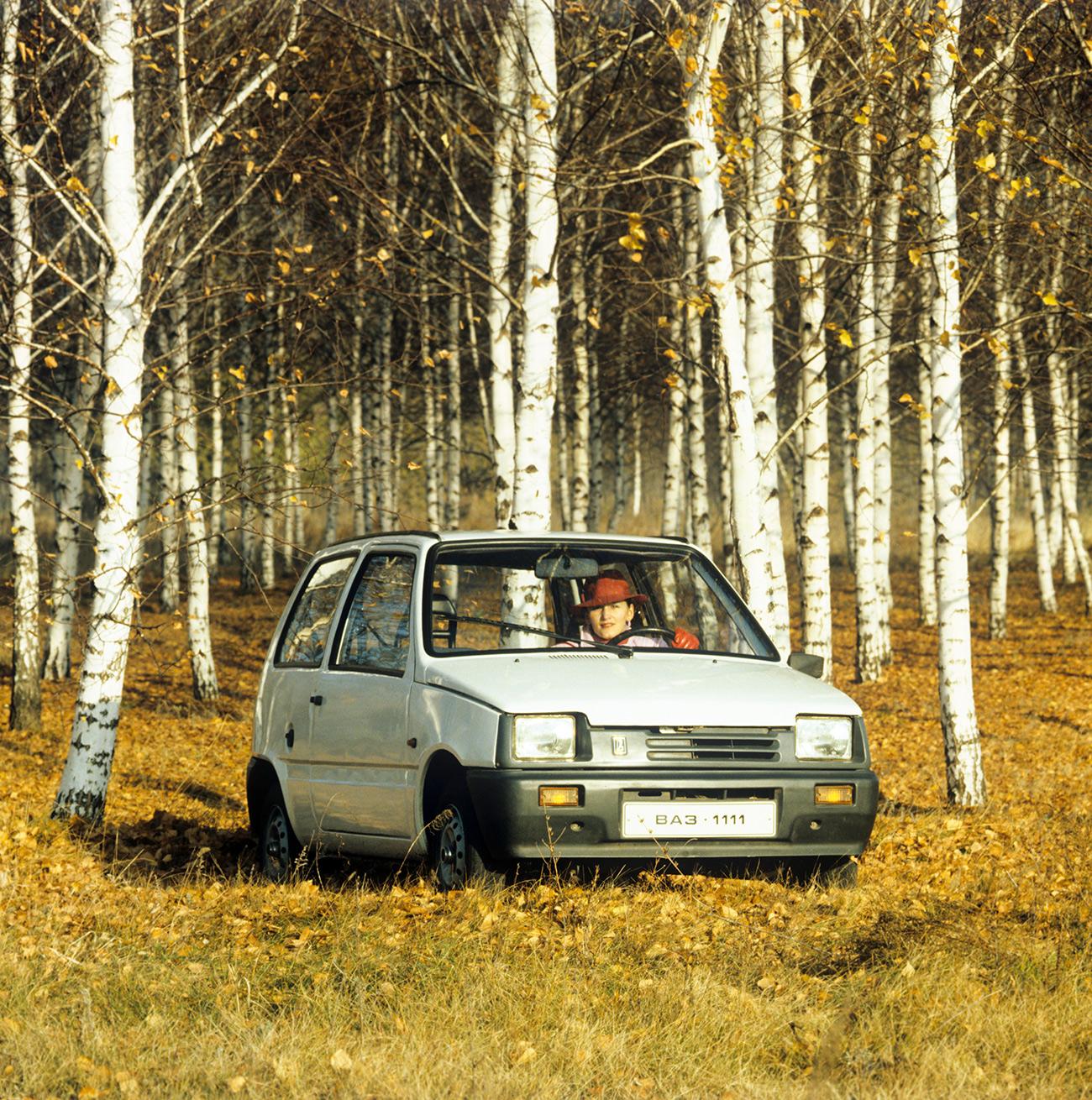 Talijanski stručnjaci su radili na AvtoVAZ-ovim modelima u prvim godinama njihove proizvodnje, a sovjetski dizajneri svoj samostalni rad počinju krajem sedamdesetih.