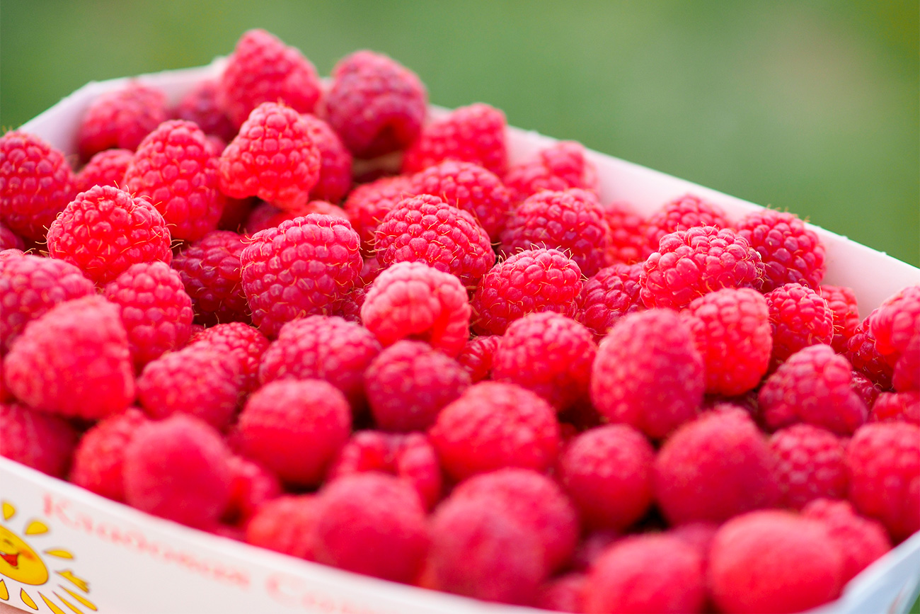 Raspberries harvested at the Kladovaya Solntsa farm in the Krasnodar Territory. 	04.08.2016