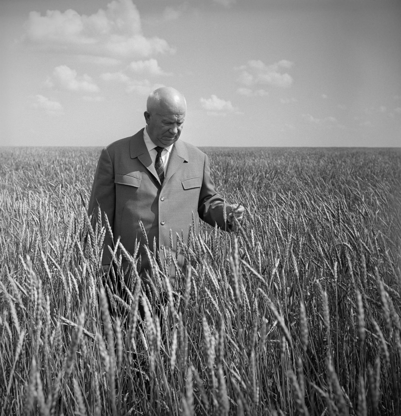 Kazakh SSR. USSR. First Secretary of the Communist Party of the Soviet Union Nikita Khrushchev visits fields of the Moskovsky State Farm.