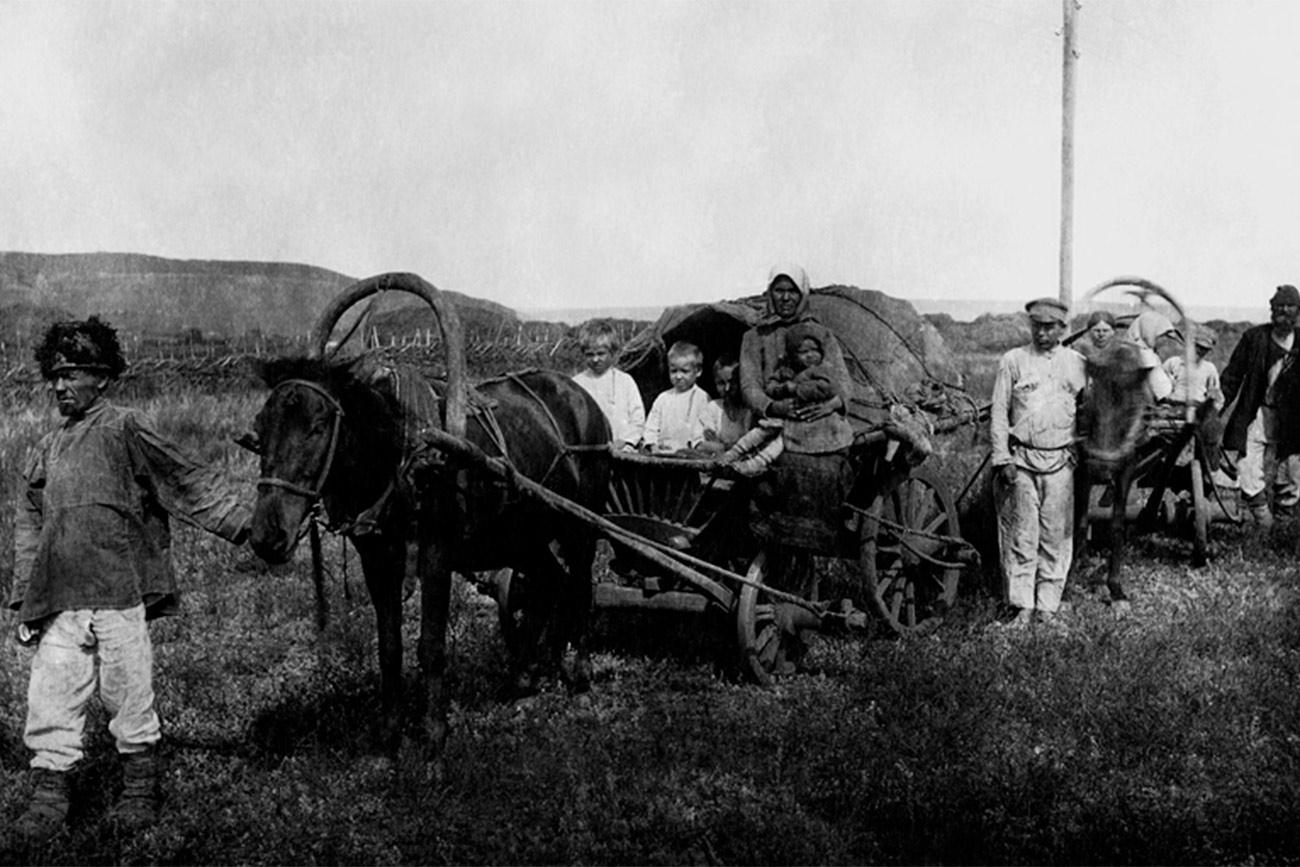 """La collettivizzazione comportò la radicale riforma del settore agricolo dell'Unione Sovietica. A partire dal 1927, si mirò ad accorpare le singole aziende agricole contadine in grandi fattorie collettive, i cosiddetti """"kolkhoz"""". I lavoratori non avevano alcun salario, ma spettava loro una parte di ciò che il kolkhoz produceva, solo per i bisogni propri e delle loro famiglia, e niente di più"""