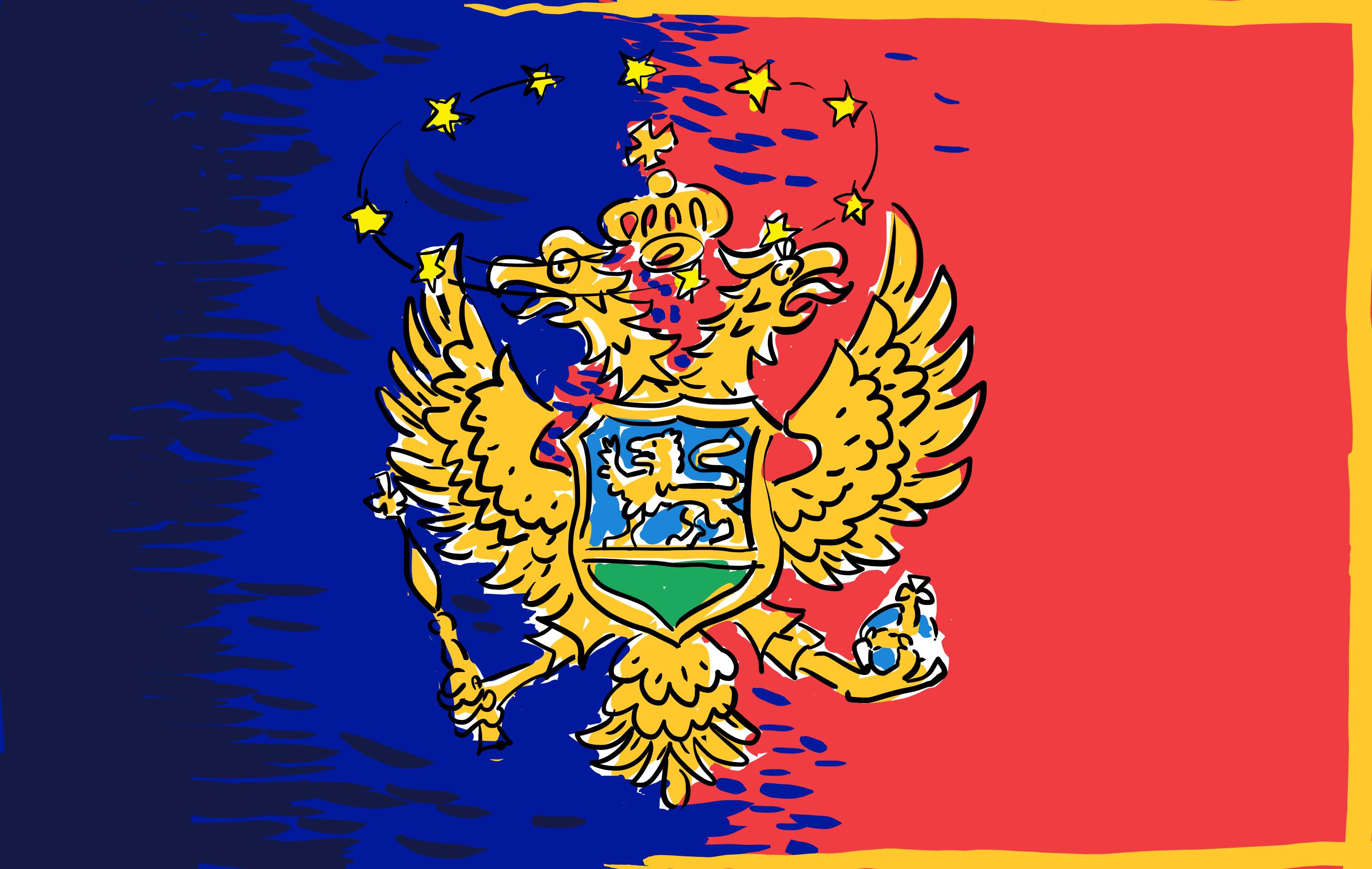 Стана известно, че  самият Алианс, включително генералният му секретар Йенс Столтенберг, поддържат кандидатурата на Черна гора.