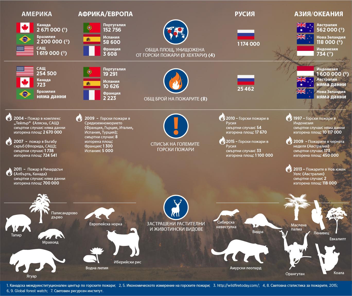 """Горските пожари нанесоха тежки поражения в много държави – от Русия до Канада и Индонезия. """"Руски дневник"""" разглежда точния мащаб на щетите, причинени от горски пожари по света през 2013 година."""