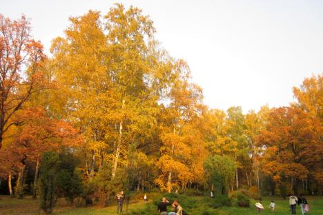 Moscow botanical gardens in autumn are just one destination Phoebe writes about.