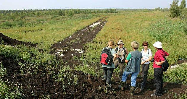 Erste Waldbegehung Mitte August in Taldom, 130 Kilometer nördlich von Moskau. Foto: Aleksey Grigoryev