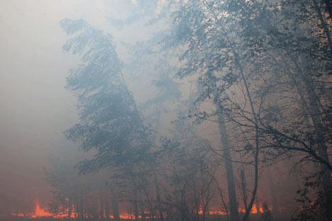 Mientras la burocracia pone numerosos obstáculos a las brigadas voluntarias de bomberos, los expertos temen que los incendios vuelvan con fuerza este año. Foto de RIA Novosti