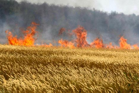 Depois de o país perder um terço da safra de grãos, governo institui medidas para abastecer mercado interno/Foto: Mikhail Metzel_AP