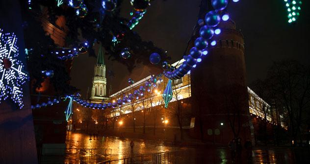 Mosca vestita a festa per Natale (Foto: Ruslan Sukhushin)