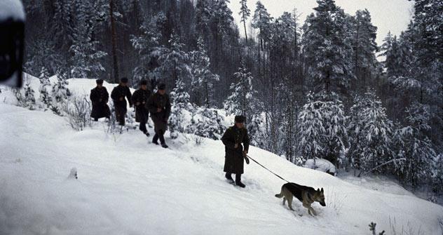 Guardia di confine in pattuglia (Foto:  RIA Novosti / Dmitryi Donskoy)