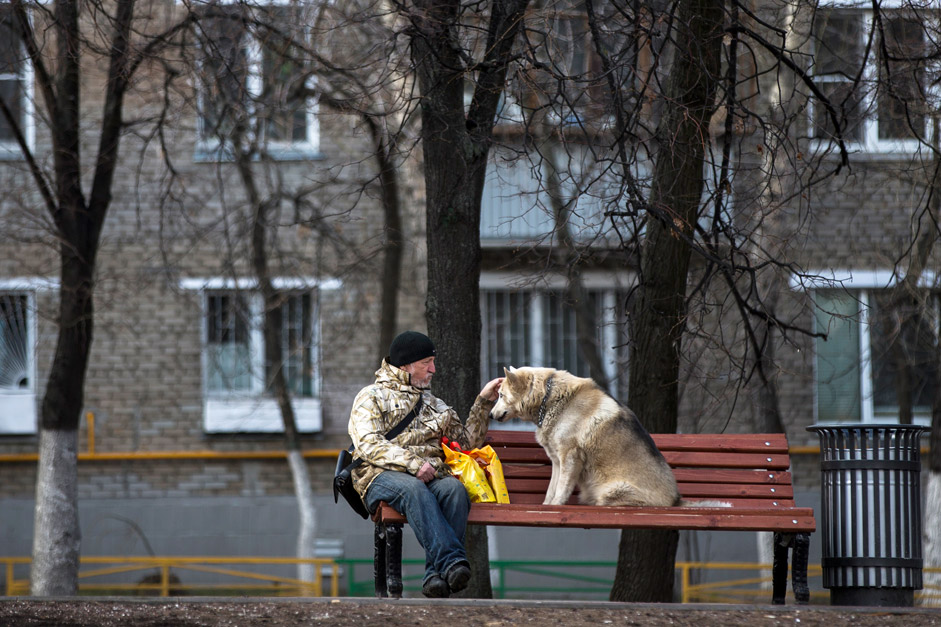 A man pets his dog on a bench in Moscow as they both enjoy the warm spring sun on April 28, 2015.