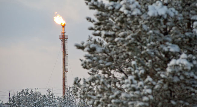 Russia's Energy Ministry is continuing consultations with Russian oil companies on their accession to the agreement on freezing.
