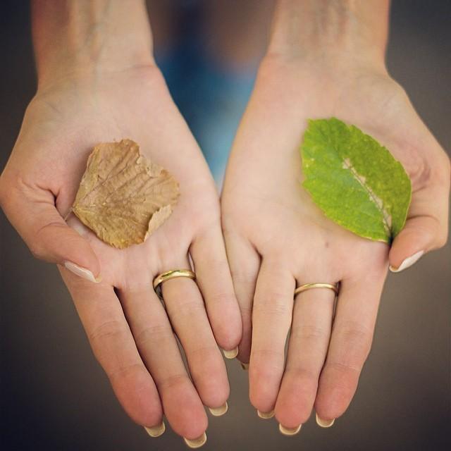 Dimanche. Le dernier mois d'été a commencé. Les feuilles sèches commencent à tomber des arbres de plus en plus souvent, nous rappelant que l'automne va bientôt pointer le bout de son nez.