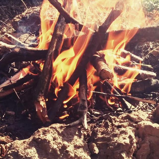 Dimanche. Il est possible de se réchauffer d'une journée fraîche et venteuse en faisant un petit feu à la périphérie de la forêt. Les parfums de la nature se combinent avec de la fumée créant un calme inexplicable. Il n'est pas possible de ne faire qu'un avec la nature à Moscou, mais il y a une alternative.