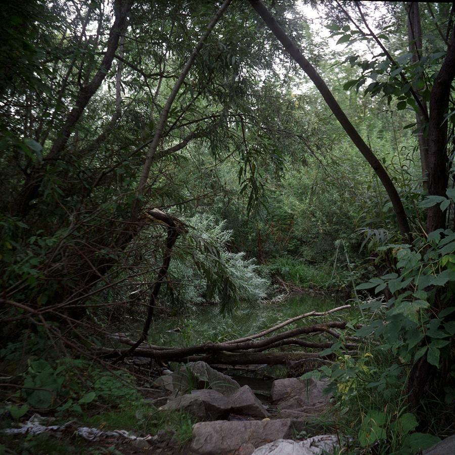 Non c'è più spazio ormai per i vecchi slittini di stampo sovietico: bisogna inoltrarsi molto nel bosco per trovare luoghi ancora incontaminati