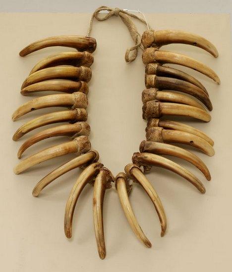 Armadura única feita de osso é encontrada na Sibéria pela primeira vez Foto: wikipedia.org
