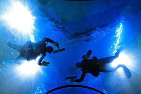 Oceanário será localizado no centro de exposições VDNKh Foto: Artiom Korotáiev/TASS