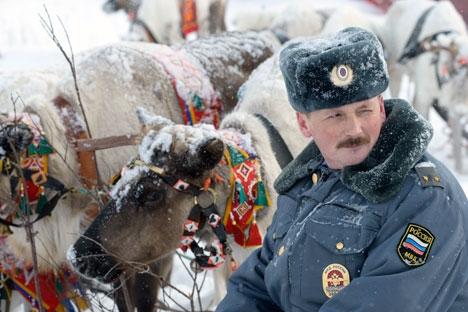 Supõe-se que em cada posto da polícia haverá de 3 a 4 animais de serviço e um trenó especial Foto: Lev Fedosseiev/TASS