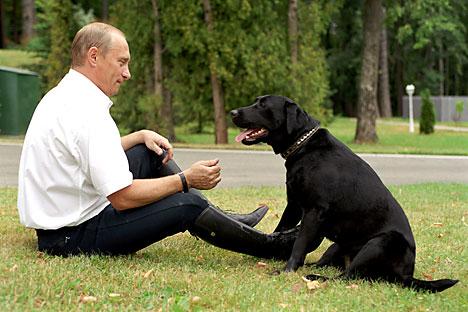 Pútin com seu labrador Foto:Vladímir Rodionov/TASS
