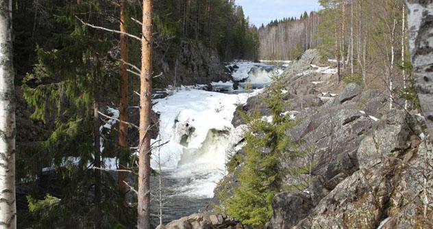 Der Wasserfall Kivach ist sehenswert, aber nicht sehr imposant. Foto: Pauline Tillmann