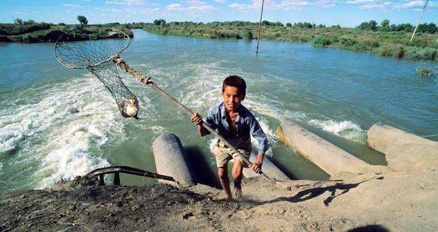 Die Fische sind zurück: dank des steigenden Wassers und sinkenden Salzgehalts. Foto: East News