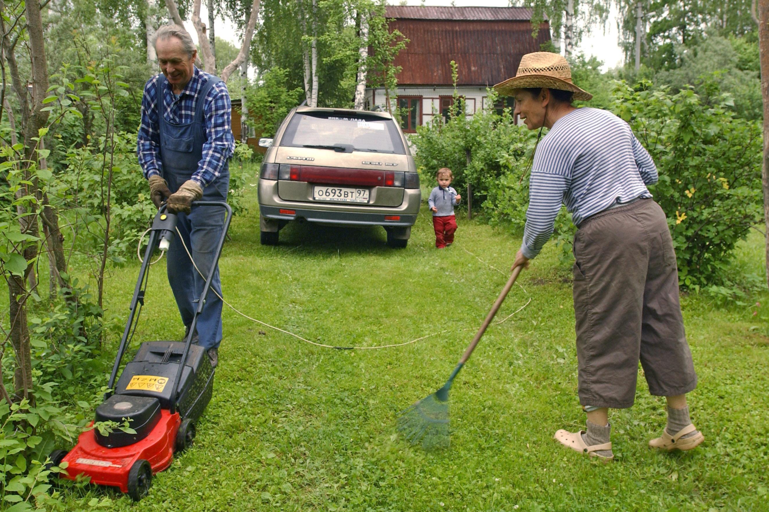 """Die Lieblingsimmobilie der Russen: """"Datschniki"""" in freier Wildbahn. Foto: TASS"""