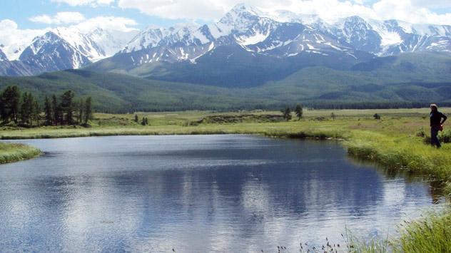 Wirtschaftlich ein Außenseiter, aber ökologisch gesehen ist Altai natürlich besser als die Industriegebiete für das Leben geeignet. Foto: Phoebe Taplin.