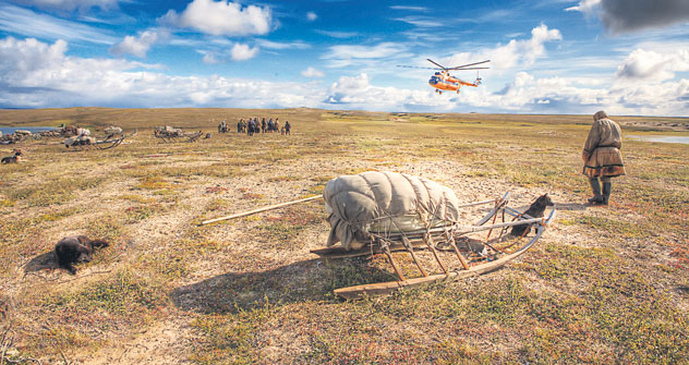 In der Tundra lebt das indigene Volk der Nenzen,deren Lebensraum von Klimawandel und Zivilisation bedroht ist. Foto: Lori/Legion Media.