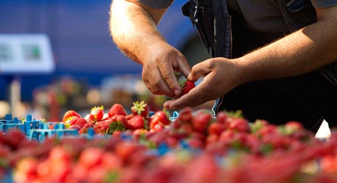Wer die russische Vielfalt erleben oder einfach frische Lebensmittel erwerben möchte, sollte auf die Moskauer Märkte gehen. Foto: Reuters
